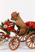 PUP 27 RK0060 05