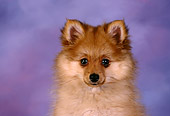 PUP 27 RK0090 04