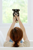 PUP 27 YT0004 01