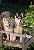 PUP 34 RC0009 01