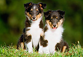 PUP 35 GR0010 03