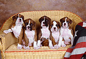 PUP 37 RK0075 07