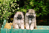 PUP 47 CE0001 01