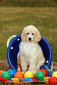 PUP 48 CE0004 01