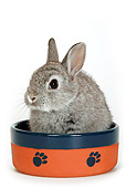 RAB 01 KH0005 01