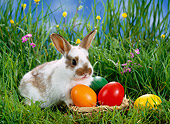 RAB 01 KH0022 01
