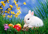 RAB 01 KH0023 01