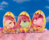RAB 01 RK0026 06