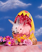 RAB 01 RK0027 10