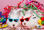 RAB 01 RK0050 07