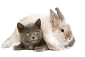 RAB 02 JE0001 01