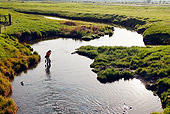 REC 04 DB0001 01