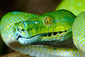 REP 01 KH0002 01