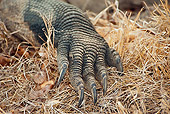 REP 02 JM0003 01