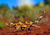 REP 02 KH0003 01