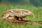 REP 02 TK0001 01