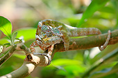 REP 03 AC0026 01