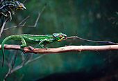REP 03 BA0001 01