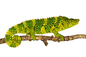 REP 03 MH0002 01