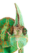 REP 03 MH0009 01