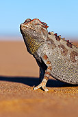 REP 03 MH0013 01
