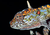 REP 03 MH0018 01