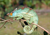REP 03 WF0005 01