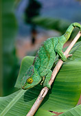 REP 03 WF0006 01
