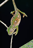 REP 04 GL0002 01