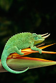 REP 04 TK0011 01