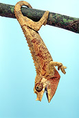 REP 04 TK0014 01