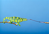 REP 04 TK0020 01