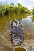 REP 07 JM0001 01