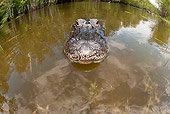 REP 07 JM0003 01