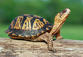 REP 08 GR0002 01