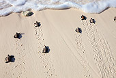 REP 08 MH0014 01