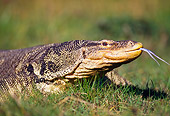 REP 10 RK0004 51