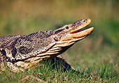 REP 10 RK0004 64