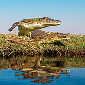 REP 11 KH0001 01