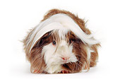 ROD 02 RK0001 04