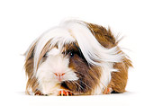 ROD 02 RK0001 07