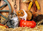 ROD 02 KH0028 01