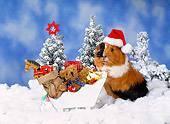 ROD 02 KH0039 01