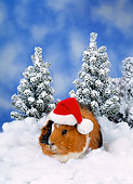 ROD 02 KH0040 01