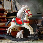 ROD 03 XA0003 01