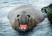 SEA 01 GL0002 01