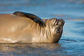 SEA 01 KH0001 01