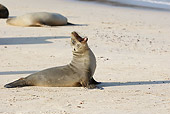 SEA 04 WF0001 01