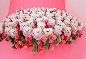 TED 01 RK0311 10