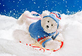 TED 01 RK1004 21